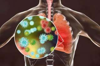Respiratory Virus Oligo Panel V2
